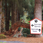 Reynold Dog Resort entrance